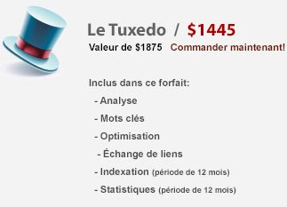 Optimisation de sites internet